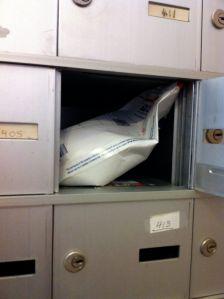 Posing Suit in Donloree's Mailbox